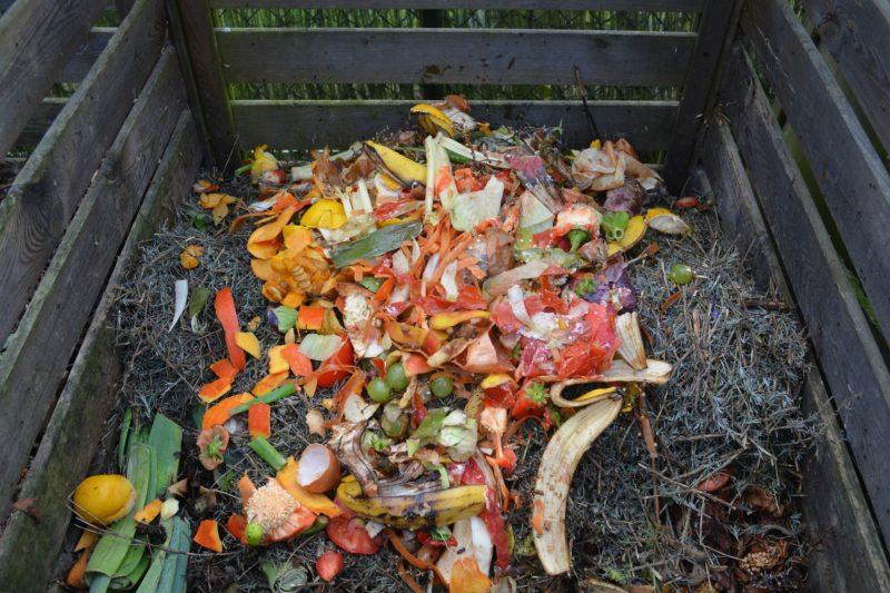 Francia no solo es el país de la mejor comida… también es el que menos alimento tira a la basura